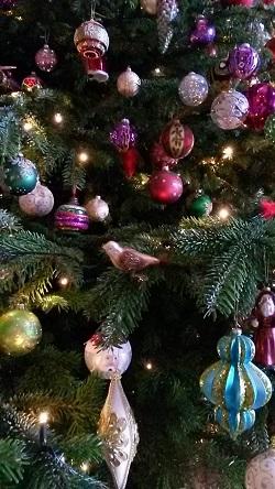 Joanna christmas blog small